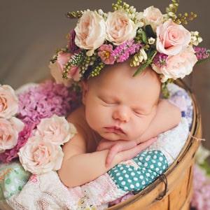 New Baby Flowers Kolkata