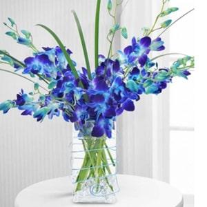 For Him Flowers Kolkata