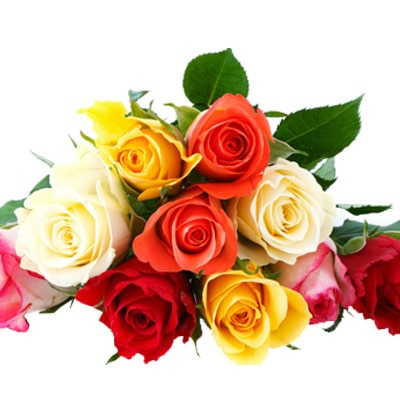 Roses Flowers Kolkata