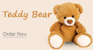Teddy bear Kolkata