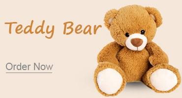 Teddy bear Kolkata