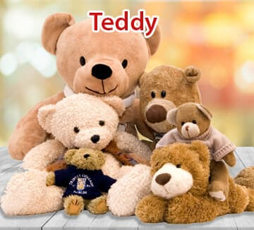 Teddy Bear Delivery Kolkata