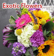 Exotic Flower Delivery Kolkata