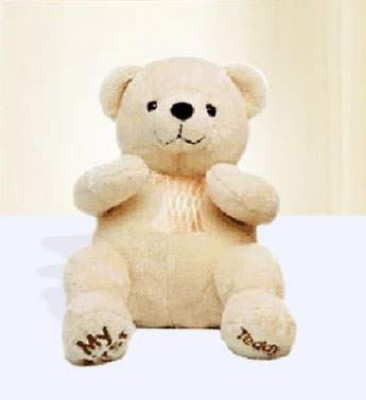 15 Inches Teddy