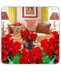 Room Full of Red Roses